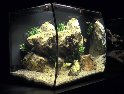 10 Gallon Fish Tanks Aquarium Kits