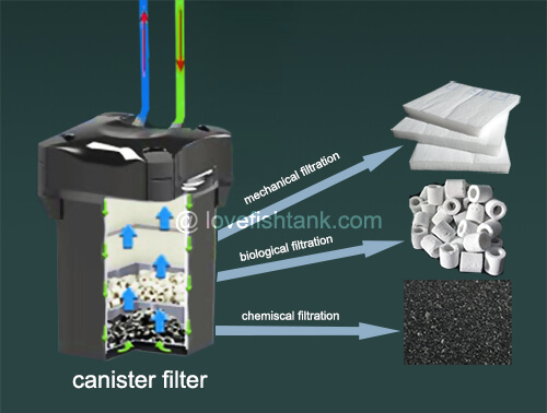Best aquarium filters types reviews and choosing guide Types of aquarium filters