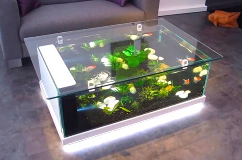 Top 5 beautiful fish tank coffee tables for sale reviews - Aquarium coffee table diy ...