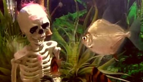 halloween-aquarium-decoration-ornaments