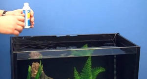 set-up-freshwater-fish-tank-(2)