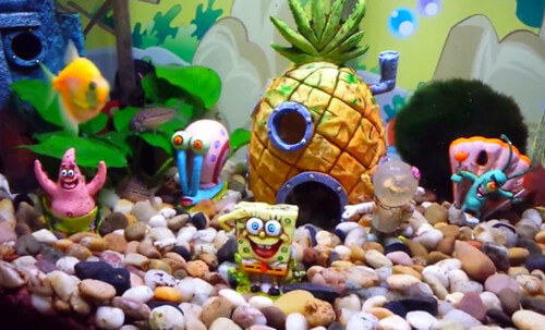 Top spongebob fish tank decorations and setup guide for Aquarium decoration set