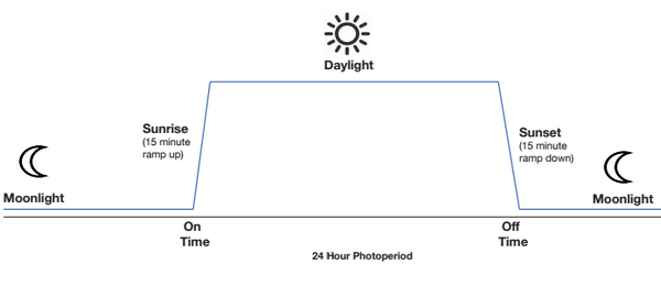 24-hour-sunrise-sunset