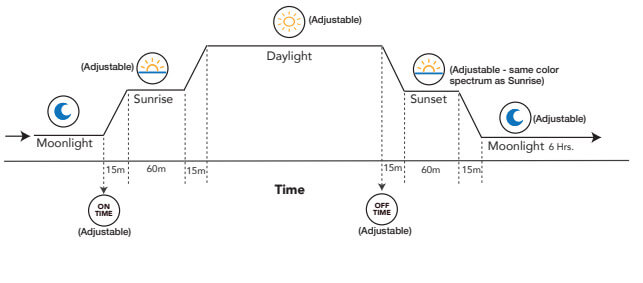 24-hour-lighting-cycle