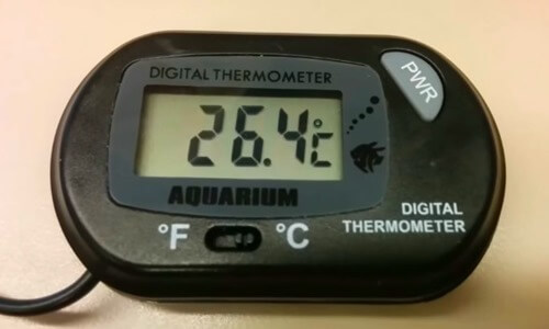 digital-aquarium-thermometer
