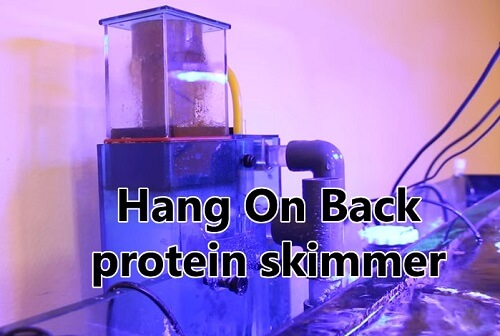 7 best Hang-On-Back protein skimmers