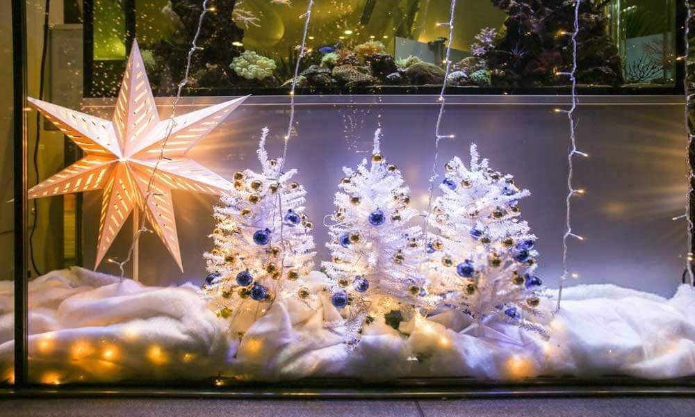 Aquarium-Decorations-2
