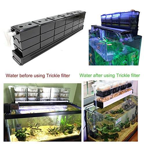 Trickle box filter